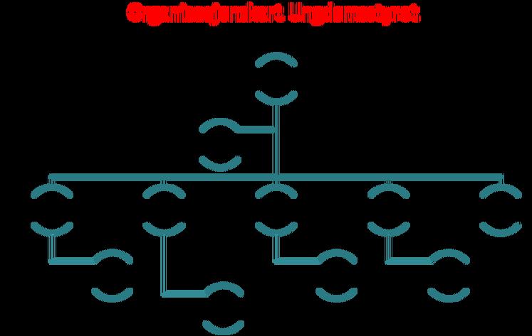 organisasjonskartUs